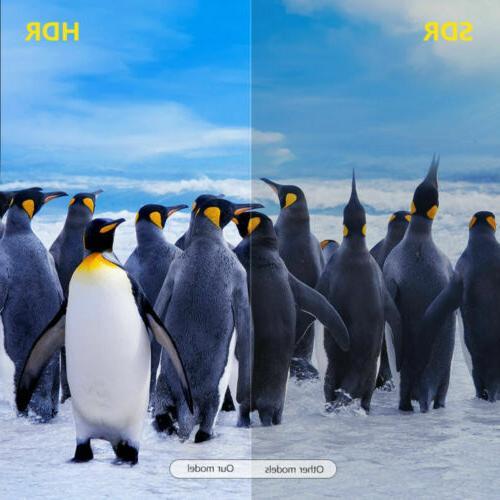 X96Q Max 4K 10.0 Core 4GB+64GB BOX Home
